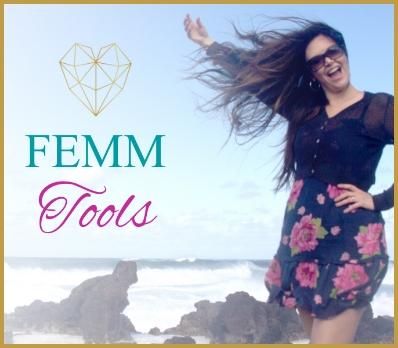 FEMM Tools Logo